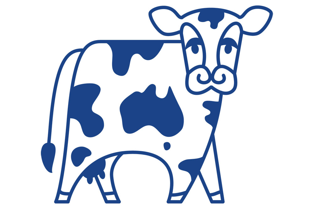 drawing of a blue cow for KYVAlley farms branding